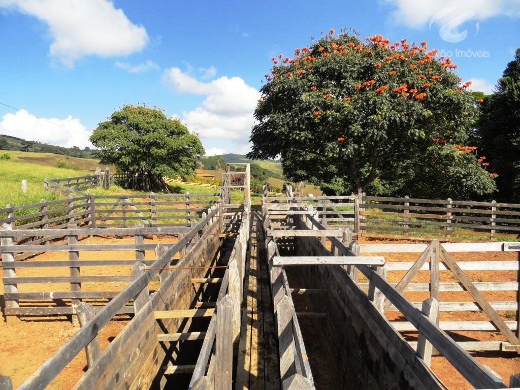 maravilhosa fazenda no sul de minas gerais com nascentes, próxima a estãncias hidrominerais.