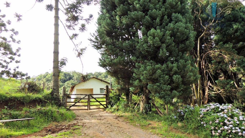 Chácara em Terra Fria, Gonçalves - MG