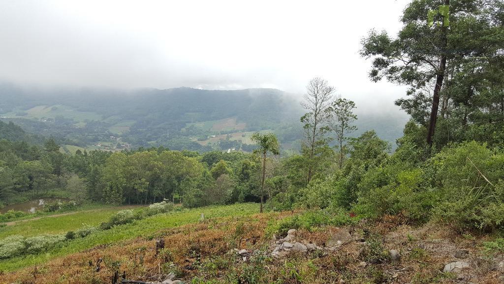 Sítio rural à venda, Nove Colônias, Nova Petrópolis.