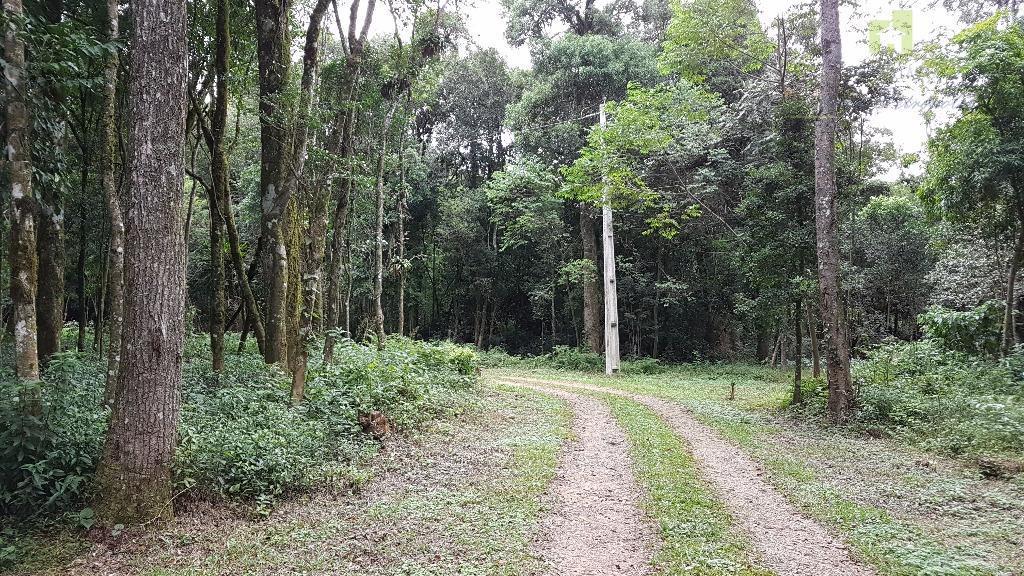 Sítio rural à venda, Linha Imperial, Nova Petrópolis.