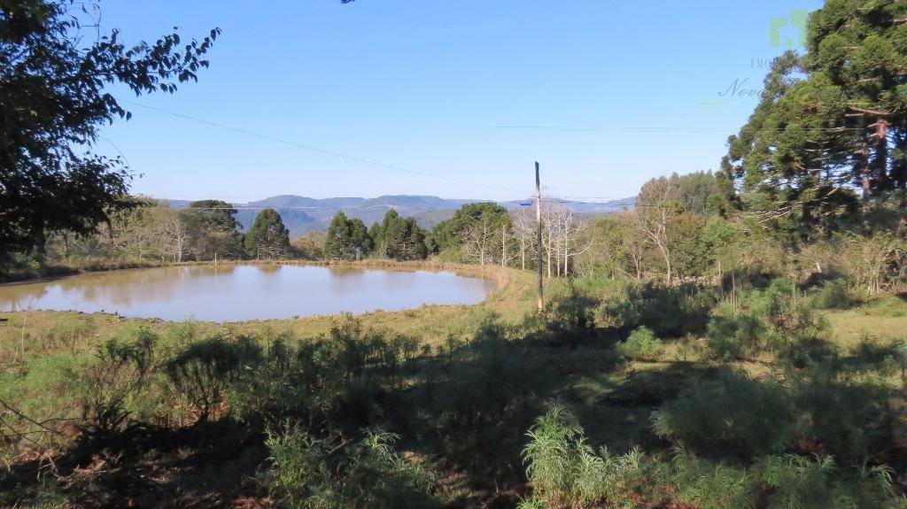 Sítio rural à venda, Linha Brasil, Nova Petrópolis.