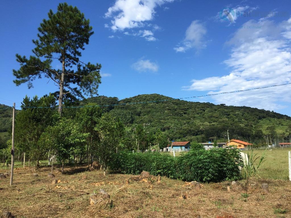 belíssima chácara, localizado em meio a muito verde, local tranquilo. terreno todo limpo e plano. acesso...