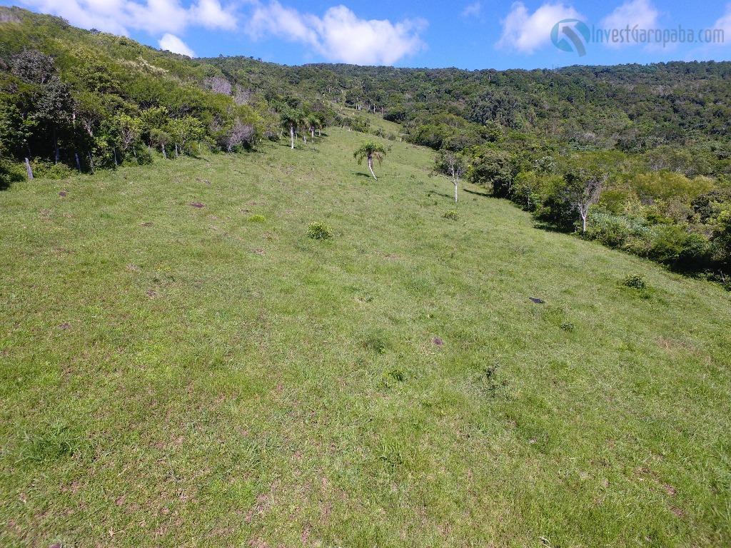 lindo terreno medindo 9.334m² - a 3 km do centro de garopaba, em meio a muita...