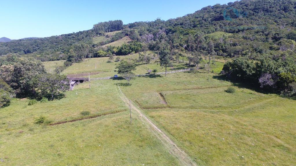 Belíssima área localizada a 8 km da Barra de Ibiraquera!