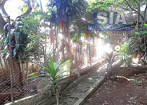 casa com ótimo terreno 325 m2, com 2 dormitórios, 2 salas, cozinha, banheiro, terraço com garagem...