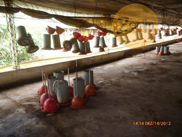 Galpão em Furquilha, Monte Alegre Do Sul - SP