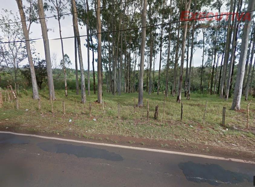 Terreno residencial à venda, Vila Guiomar, Ribeirão Preto.