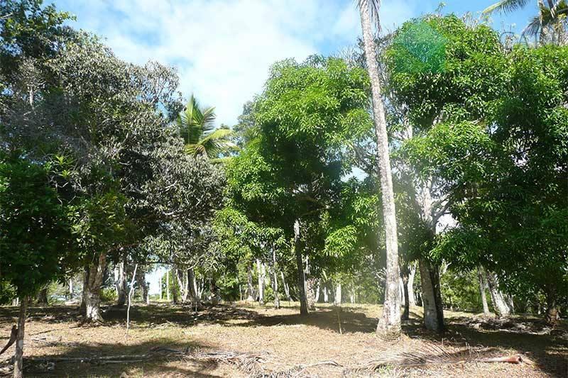Área residencial à venda, Centro, Itacaré.