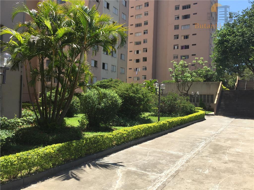 Apartamento residencial à venda, Butantã, São Paulo - AP3304.