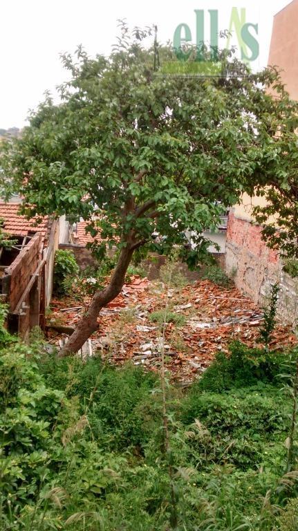 Terreno residencial à venda, Vila Yolanda, Osasco - TE0005.