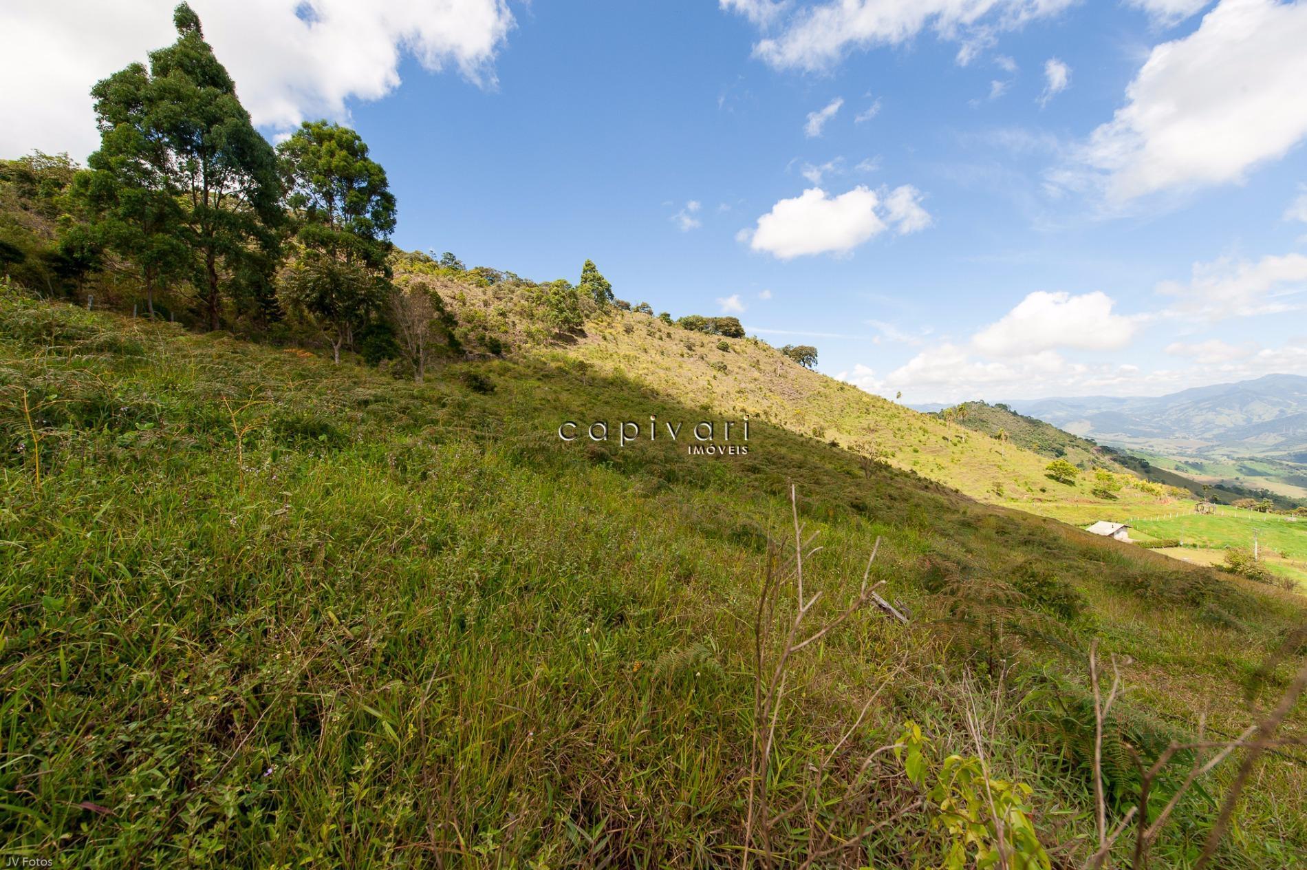Sítio  rural à venda, Alto da Boa Vista, Campos do Jordão.
