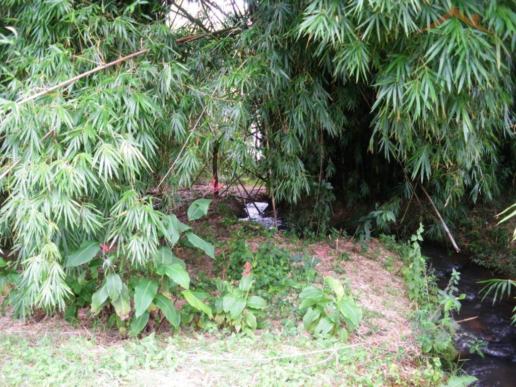 excelente casa em área rural em fama-mg, com 40 metros à margem da represa de furnas.são...