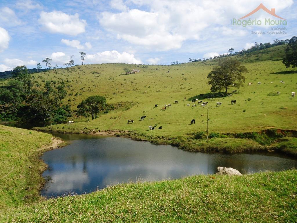 Fazenda rural à venda, Serro-MG.