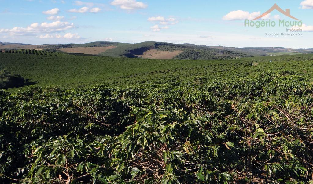 Fazenda à venda, São Tiago-MG.