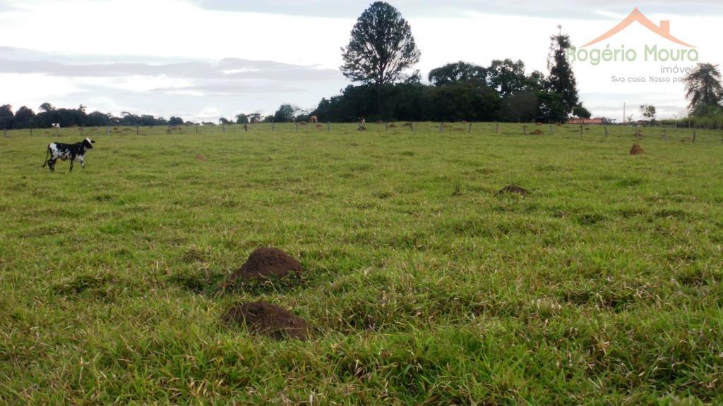 sítio rural à venda, divino espírito santo ( cavacos), alterosa. mg.são 5,44 hectares de terra de...