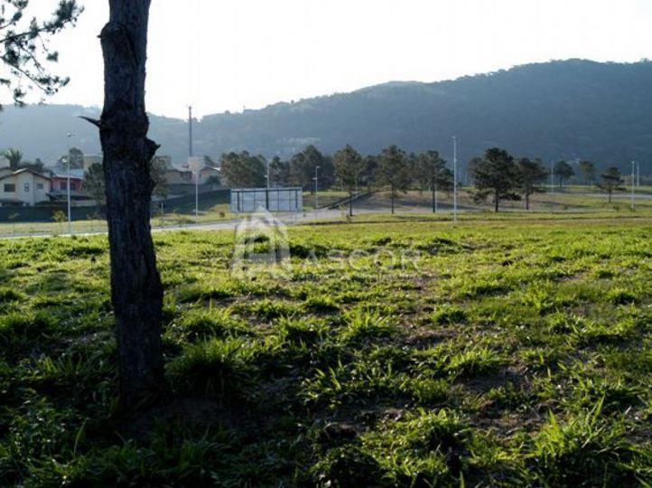 Terreno, Lagoa da Conceição, Florianópolis (TE0031) - Foto 7