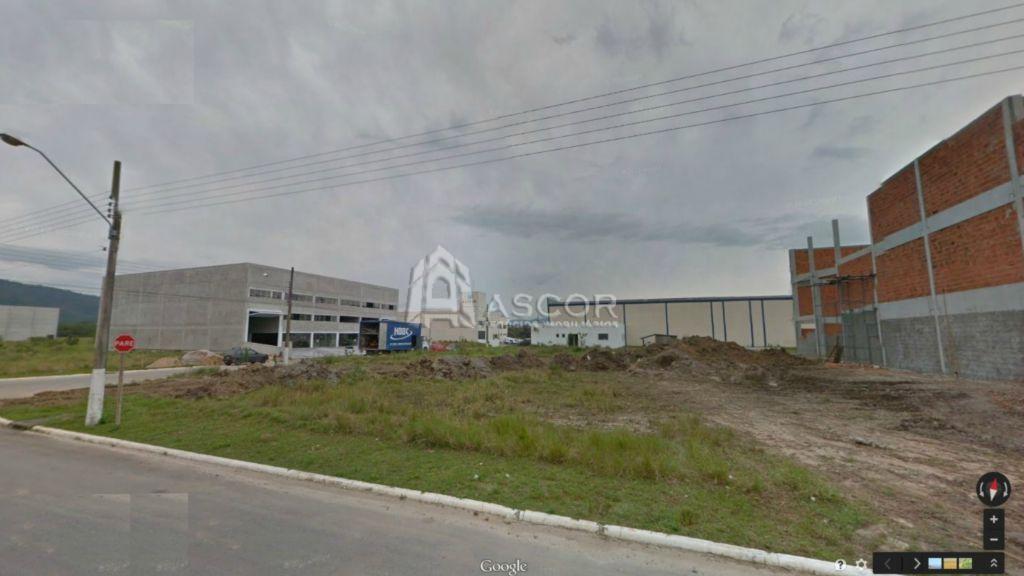 Terreno, Cidade Universitária Pedra Branca, Palhoca (TE0073) - Foto 4