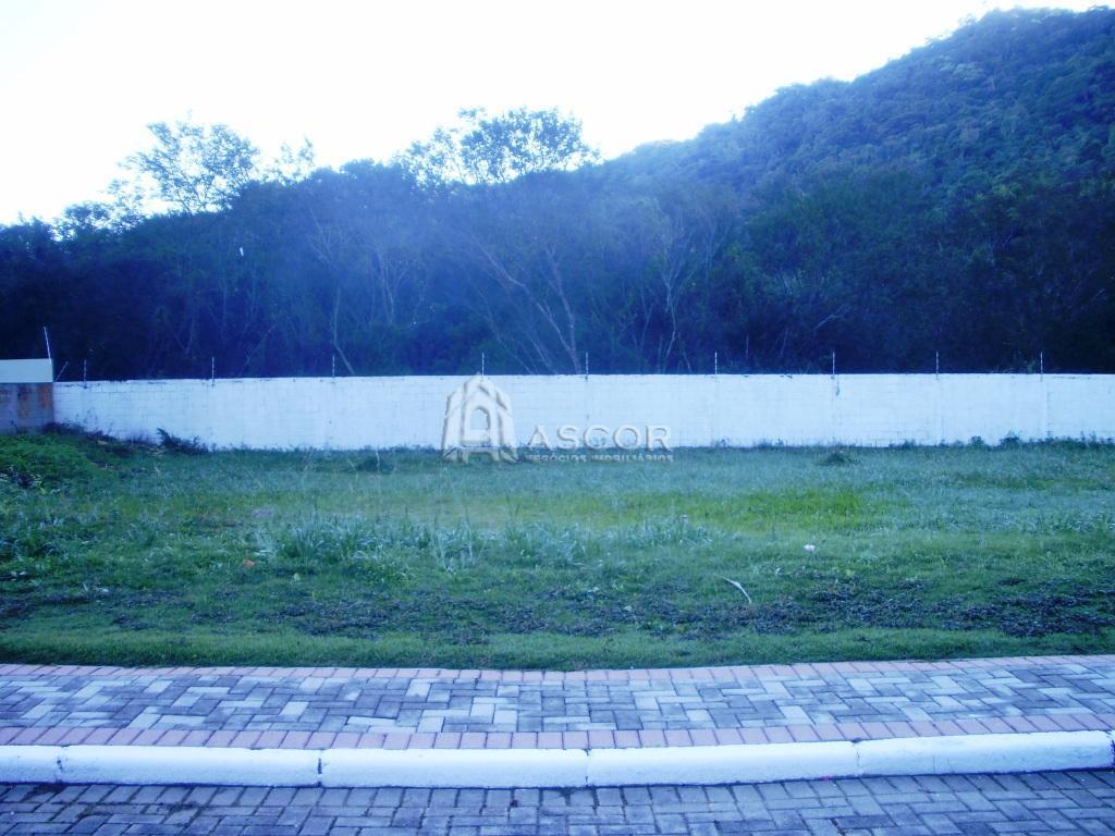 Terreno, Cachoeira do Bom Jesus, Florianópolis (TE0075) - Foto 4