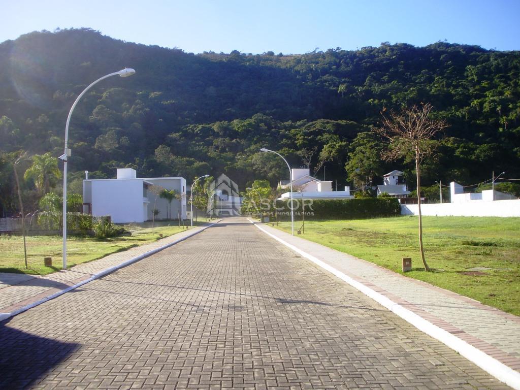 Terreno, Cachoeira do Bom Jesus, Florianópolis (TE0075) - Foto 8