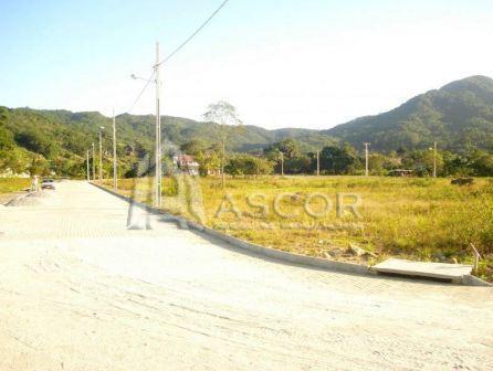 Terreno, Ratones, Florianópolis (TE0086) - Foto 5