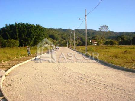 Terreno, Ratones, Florianópolis (TE0086) - Foto 6