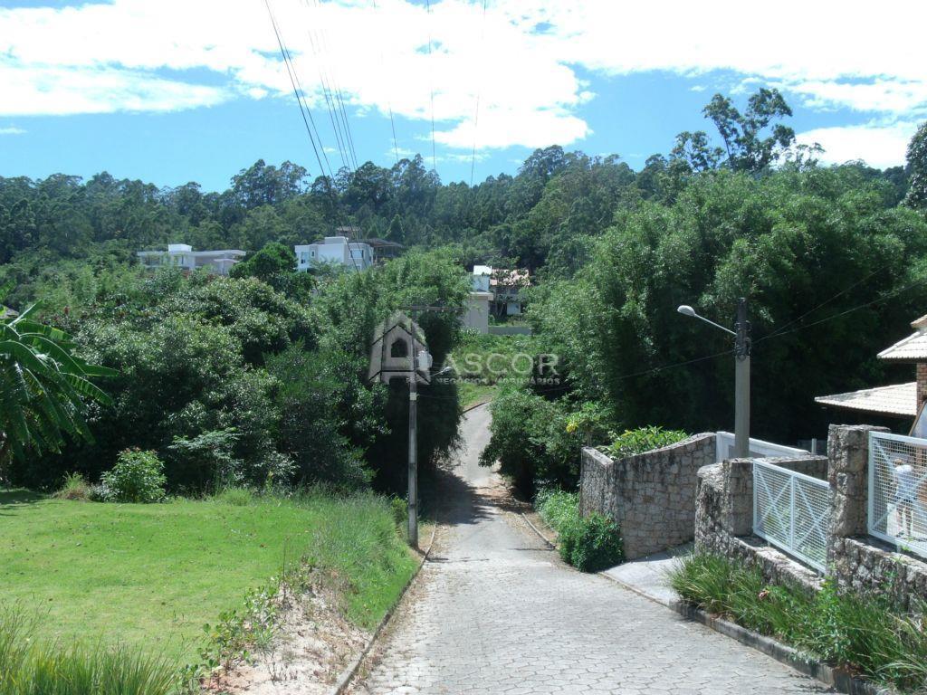 Terreno, Cacupé, Florianópolis (TE0098) - Foto 6