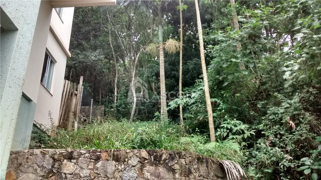 Casa 3 Dorm, Lagoa da Conceição, Florianópolis (CA0119) - Foto 3
