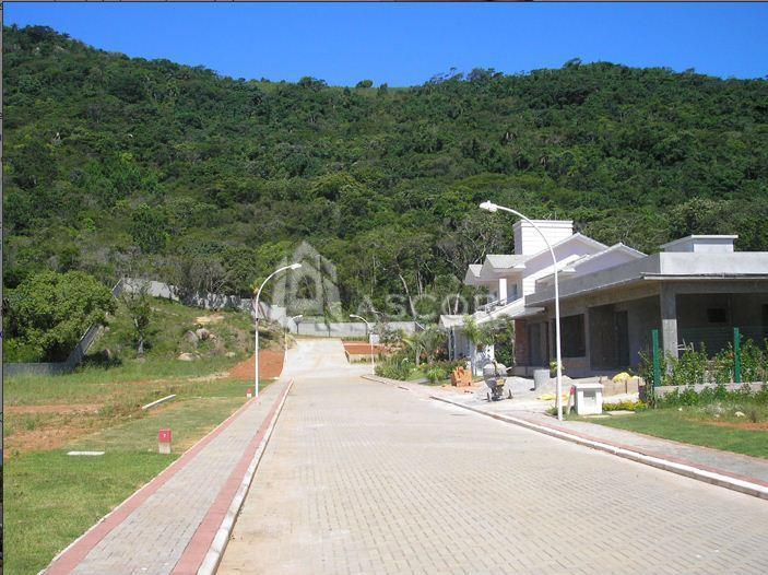 Terreno, Cachoeira do Bom Jesus, Florianópolis (TE0075) - Foto 12