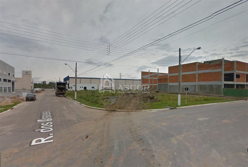 Terreno, Cidade Universitária Pedra Branca, Palhoca (TE0073) - Foto 6