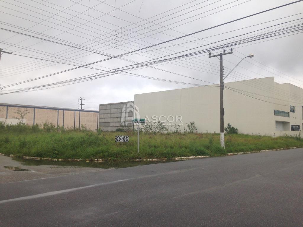 Terreno, Cidade Universitária Pedra Branca, Palhoca (TE0073) - Foto 3
