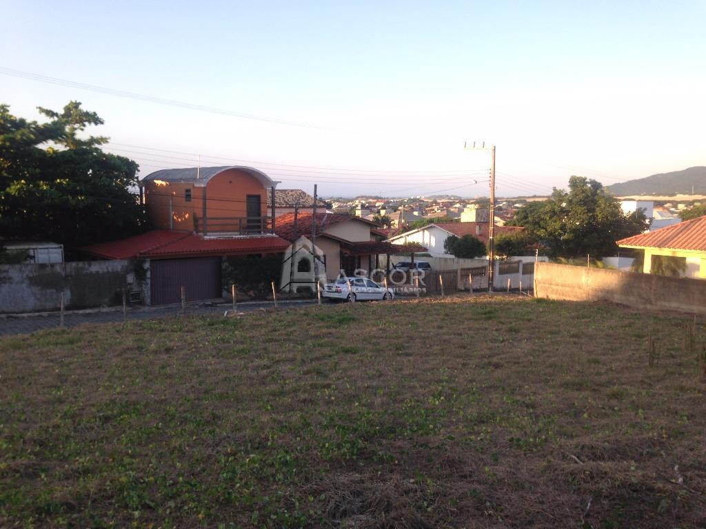 Terreno, Ingleses, Florianópolis (TE0119) - Foto 7