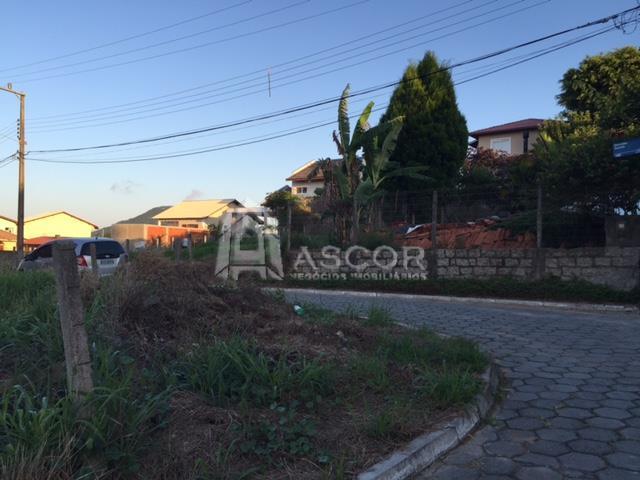 Terreno, Ingleses, Florianópolis (TE0119) - Foto 14