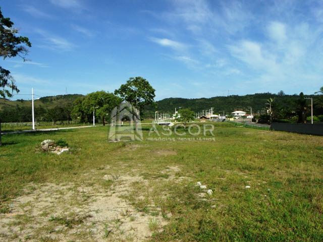 Ascor Imóveis - Terreno, Vargem Grande (TE0093) - Foto 13
