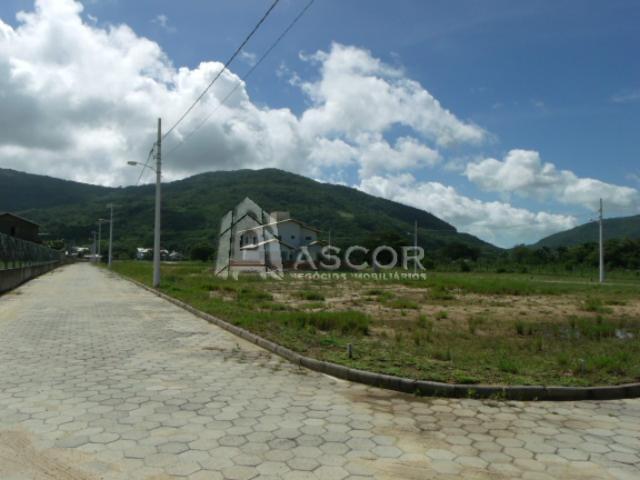 Ascor Imóveis - Terreno, Vargem Grande (TE0093) - Foto 16