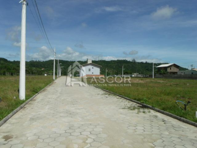 Ascor Imóveis - Terreno, Vargem Grande (TE0093) - Foto 17
