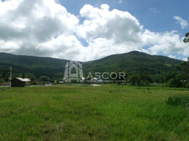 Ascor Imóveis - Terreno, Vargem Grande (TE0093) - Foto 18