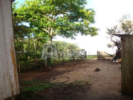 Terreno, Sambaqui, Florianópolis (TE0124) - Foto 3
