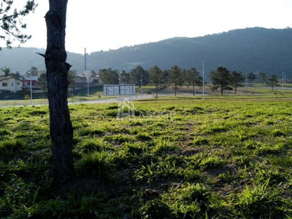 Terreno, Lagoa da Conceição, Florianópolis (TE0031) - Foto 14