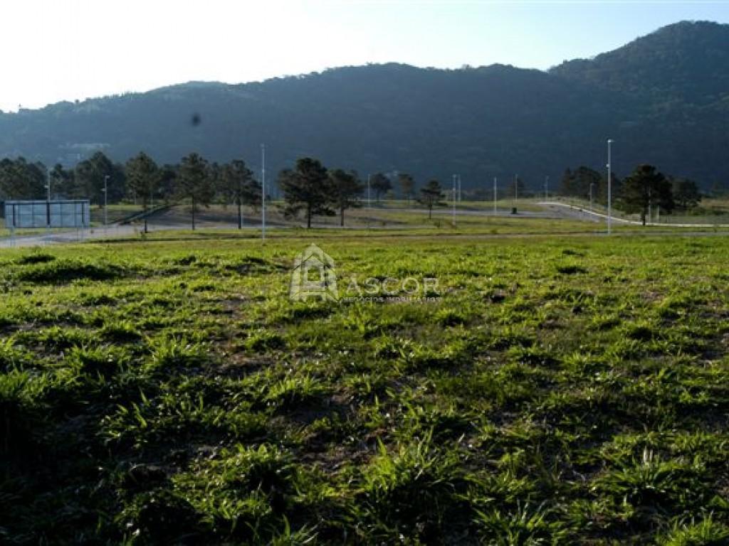 Terreno, Lagoa da Conceição, Florianópolis (TE0031) - Foto 17