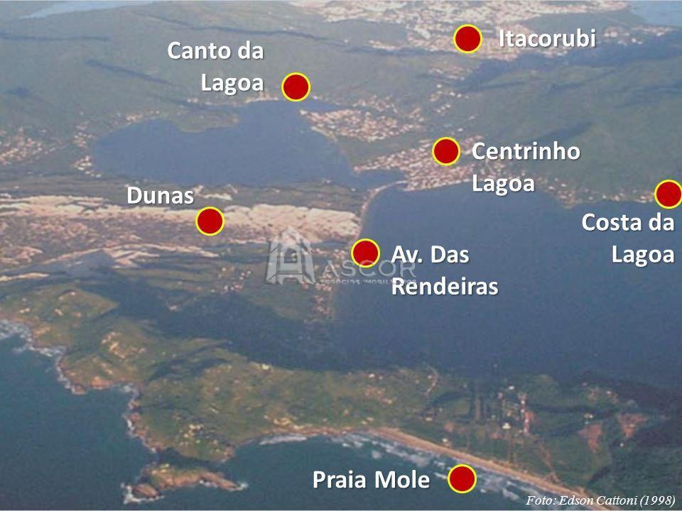 Terreno, Lagoa da Conceição, Florianópolis (TE0009) - Foto 2