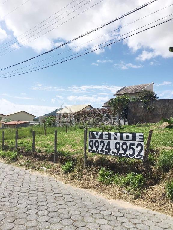 Terreno, Ingleses, Florianópolis (TE0119) - Foto 3