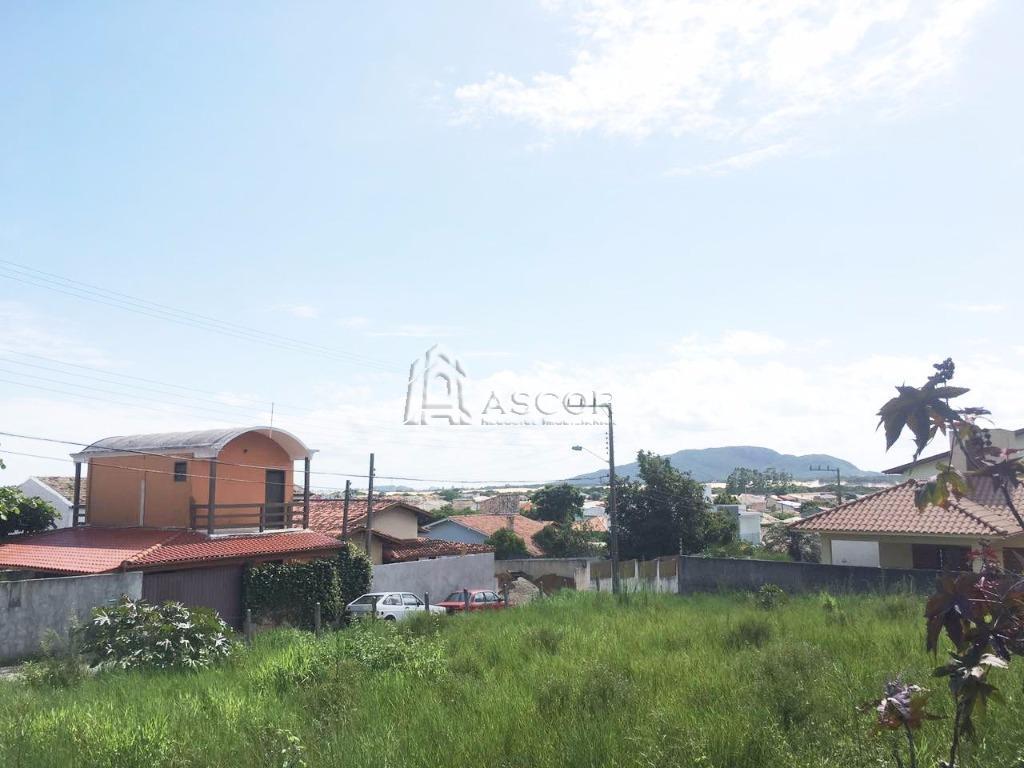 Terreno, Ingleses, Florianópolis (TE0119) - Foto 5