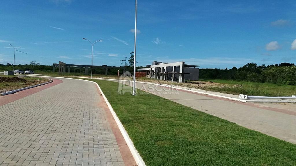 Terreno, Ratones, Florianópolis (TE0113) - Foto 4