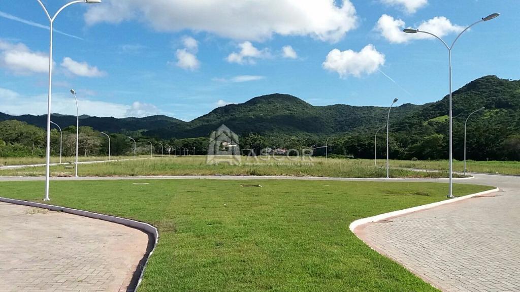 Terreno, Ratones, Florianópolis (TE0115) - Foto 5
