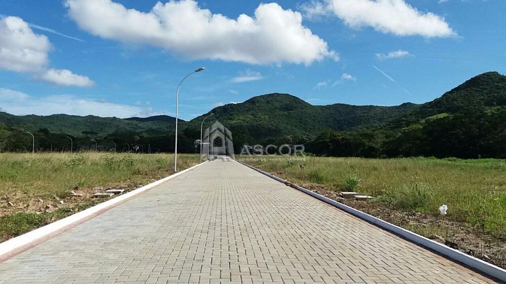 Terreno, Ratones, Florianópolis (TE0116) - Foto 2