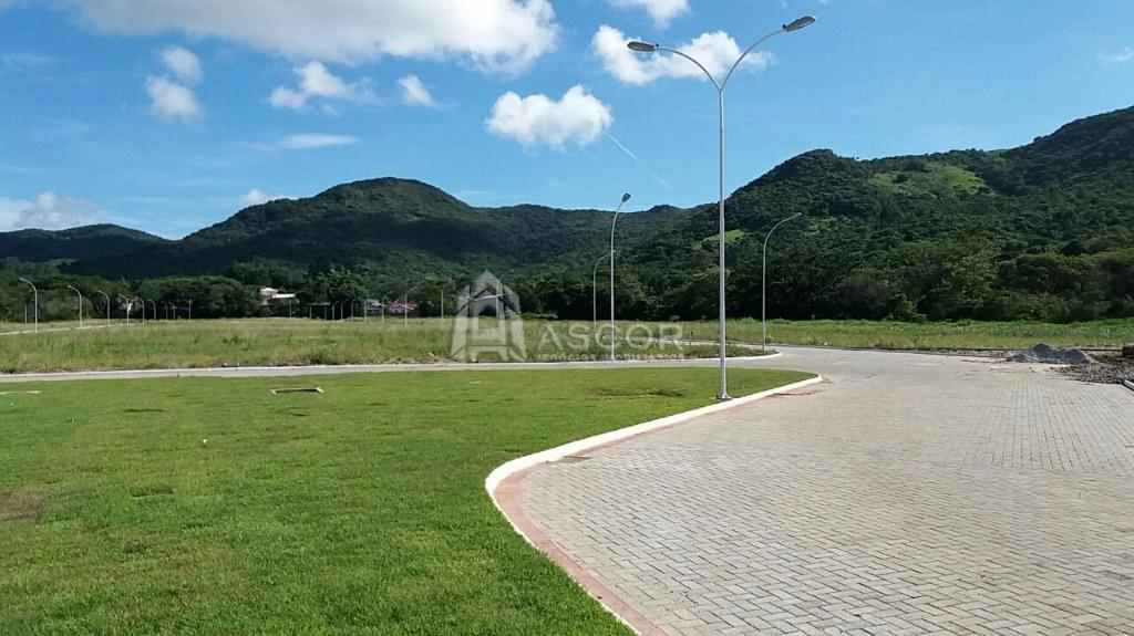 Terreno, Ratones, Florianópolis (TE0116) - Foto 8