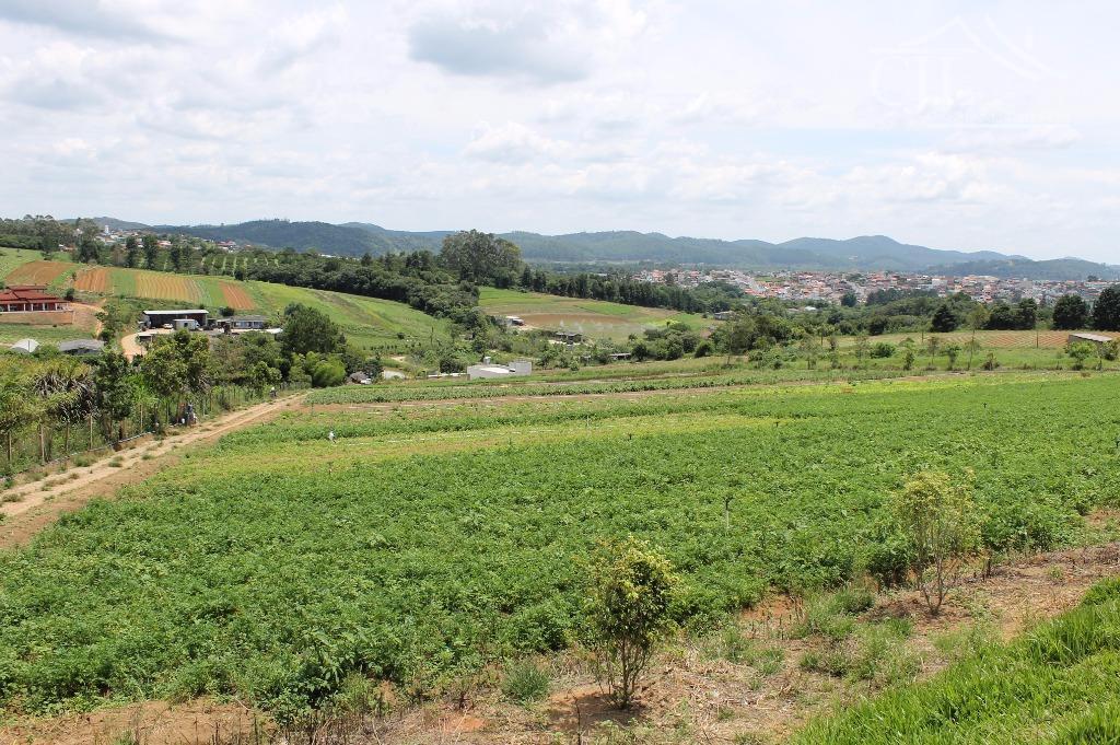 Sítio rural à venda, Hiroy, Biritiba Mirim.