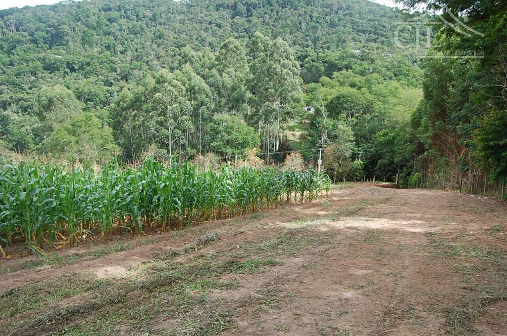 terreno magnifico para sítio ou plantação,localizado próximo a rodovia, ótimo acesso, e com infraestrutura,20.000m² com 90%...