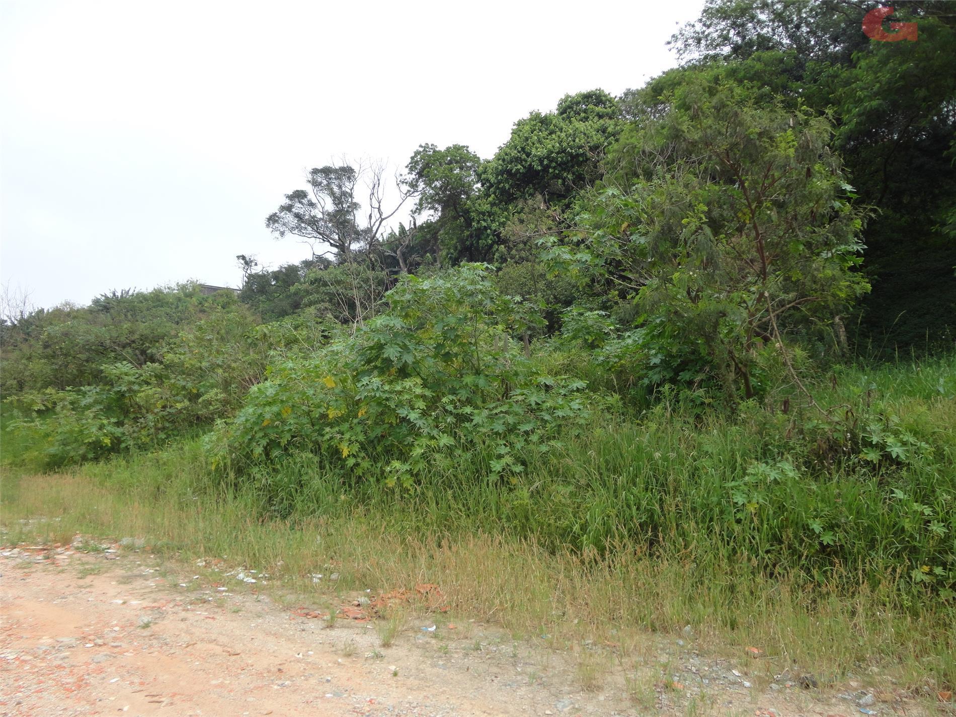 Terreno em Taboão, São Bernardo Do Campo - SP