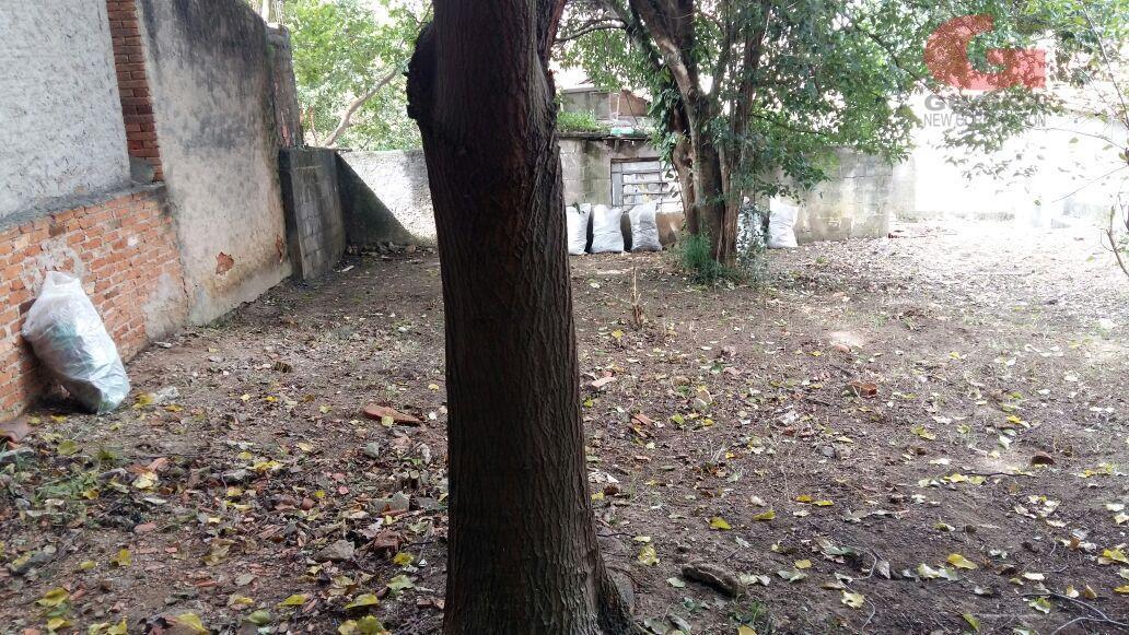 Terreno à venda em Nova Gerti, São Caetano Do Sul - SP